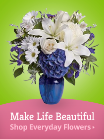 Make Life Beautiful Shop Everyday Banners